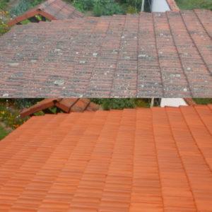 Nettoyant toiture